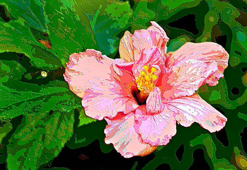 Carmen Del Valle - Digital Art Pink Hibiscus