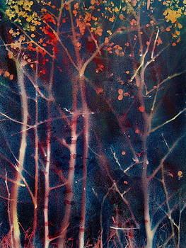 Dim Light by Avi Gorzhaltsan