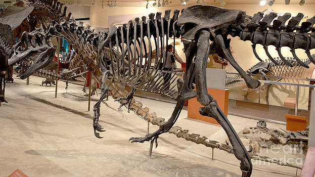 Pravine Chester - Dinosaurs at the Smithsonian