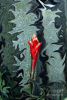 Disney flower by Barry Shaffer
