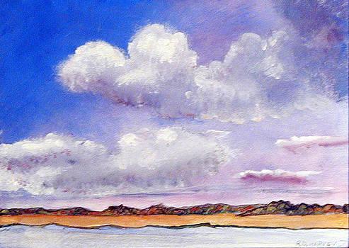 Distant Shore by Robert Harvey