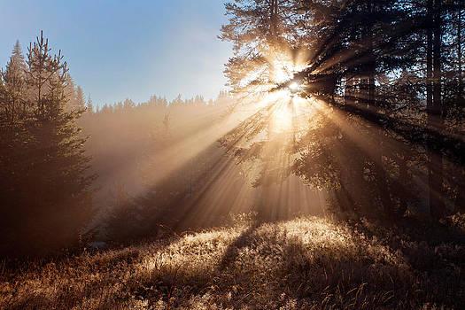 Divine beams by Evgeni Dinev