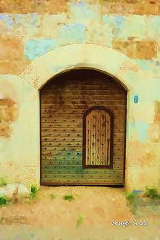 DO-00489 Old door within a door by Digital Oil