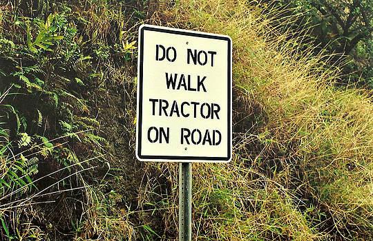 Marilyn Wilson - Do Not Walk ...