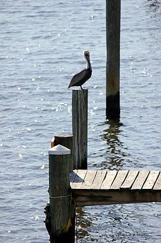 Deborah Hughes - Dock of the Bay