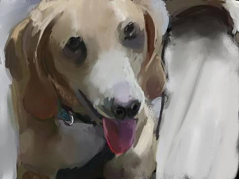 Dog Happy. by Dakota Eichenberg