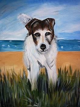 Dog by Kanthasamy Nimalathasan