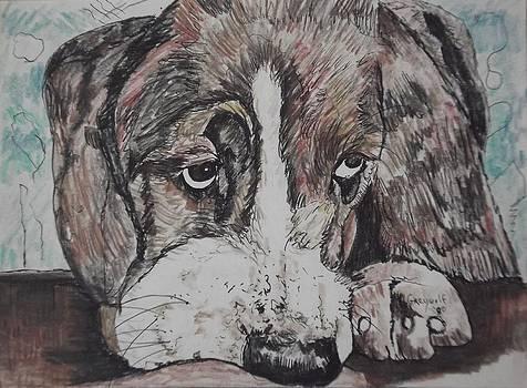 Dog by Nashoba Szabol