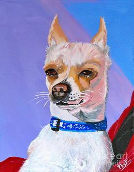 Doggie Know it All by Phyllis Kaltenbach