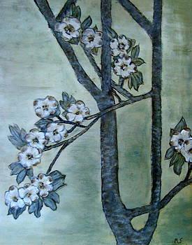 Dogwood Blossoms by Melynnda Smith