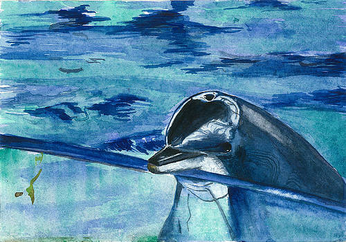 Dolphin by Vijayendra Bapte