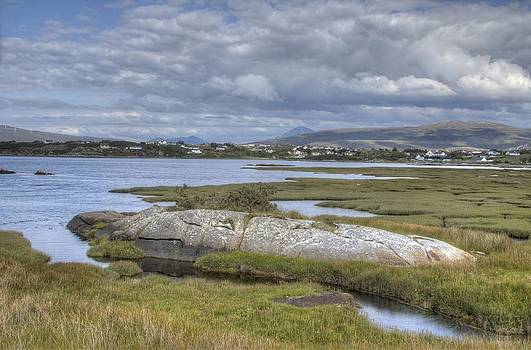 Donegal summer by David McFarland