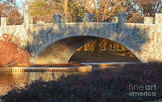 Dont Burn Bridges by Shirley  Taylor