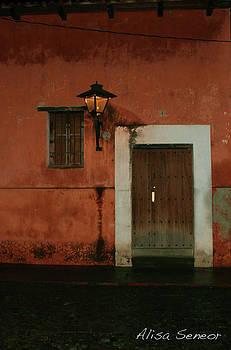 Door Orange P by Alisa Seneor