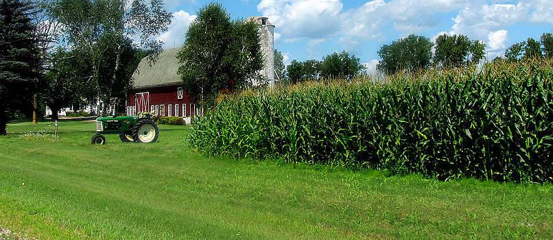Ms Judi - Down On The Wisconsin Farm
