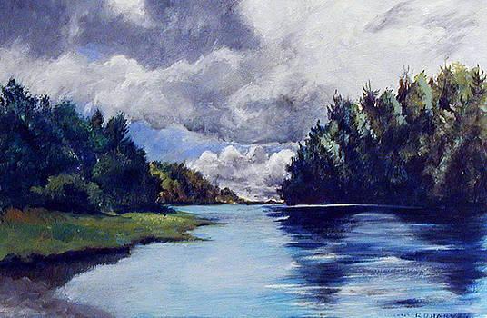 Down River by Robert Harvey