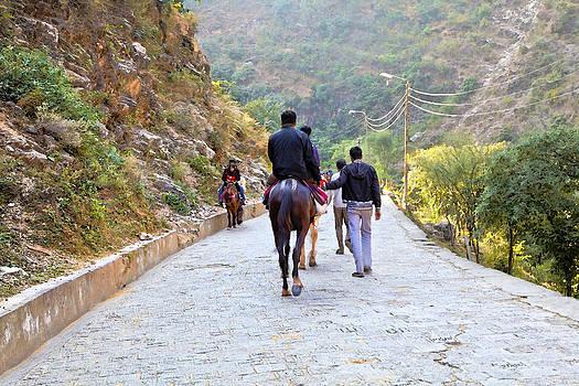 Kantilal Patel - Downhill Shiva Kodi