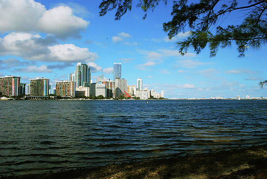 Gary Wonning - Downtown Miami