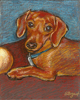 Doxie Ball by Bethany Bryant