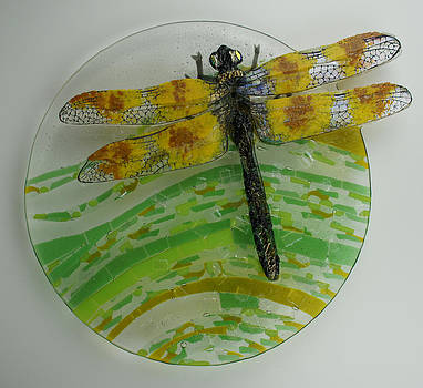 Dragon Fly Away by Michelle Rial