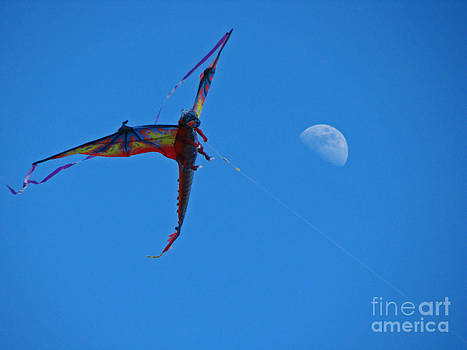 Dragon Kite by Sandra Longstreet