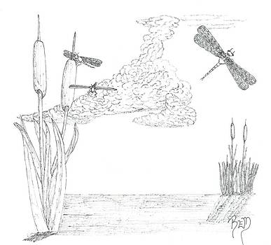 Dragonflies And Cattails - Sketch by Robert Meszaros