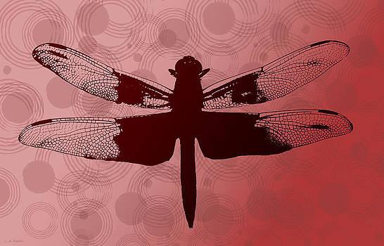 Dragonfly by Lauren Radke