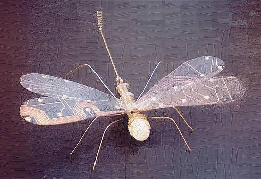 Dragonfly by Max Shkoropado