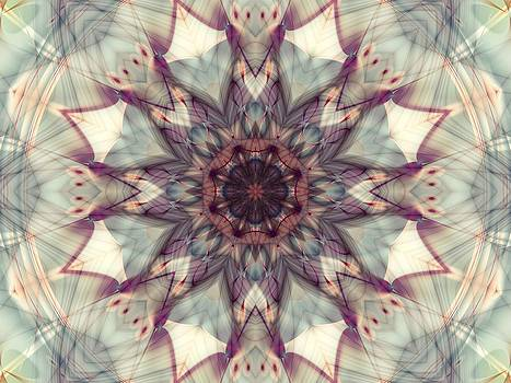 Dream Releaser by Lauren Goia