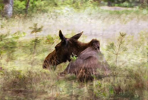 Dreamland Moose by Sandy Mallet