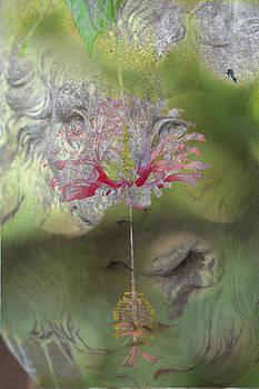 Dreamscape by Elizabeth Hart