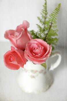 Dreamy Roses by Sherry Hahn