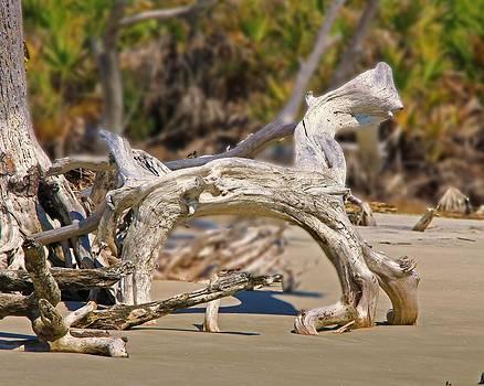 Driftwood horse by Jim Ziemer