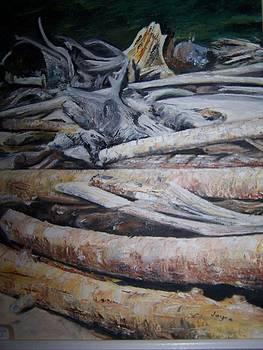 Driftwood by Joyce Reid