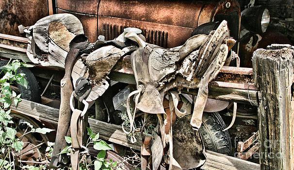 Dual Saddles by Donald Tusa