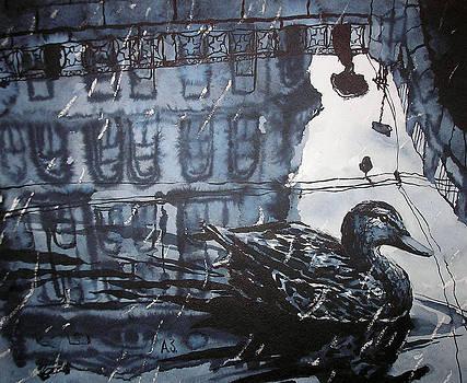Duck by Aleksey Zuev