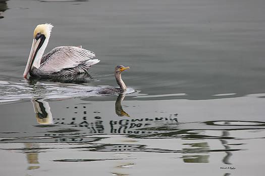 Deborah Hughes - Duck Crossing