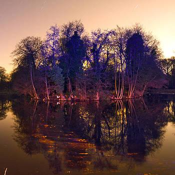 Duck Island I by Hugo Baptista