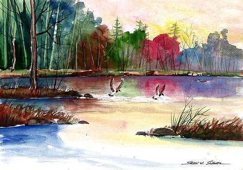 Duck Lake by Steven W Schultz