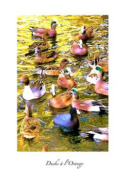 Ducks a l'Orange by Brian D Meredith