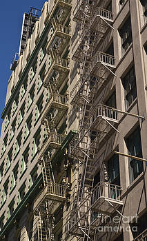 Tim Mulina - Dueling Fire Escapes