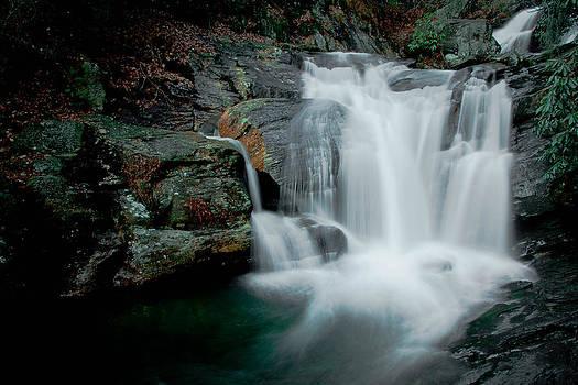 Dukes Creek in Chattahoochee National Forest by Karen Lawson