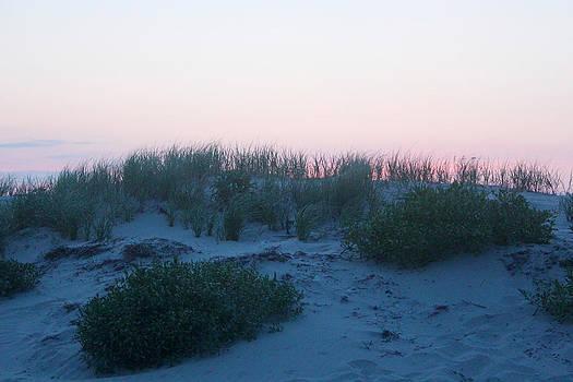 Dune at Dusk by Rick Catizone