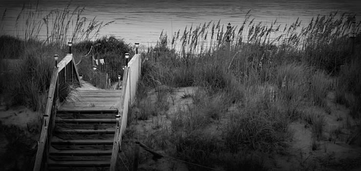 Dune Stairway  by Kim Galluzzo Wozniak