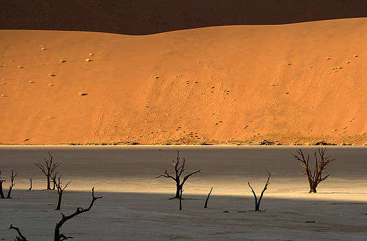 Dunes in Deadvlei  by Michal Cerny