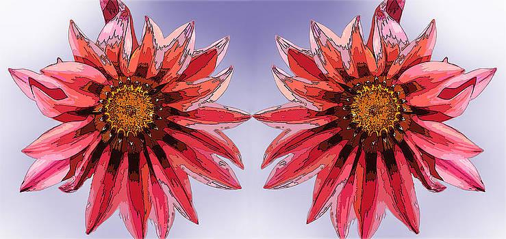 Duo floral by Jesus Nicolas Castanon