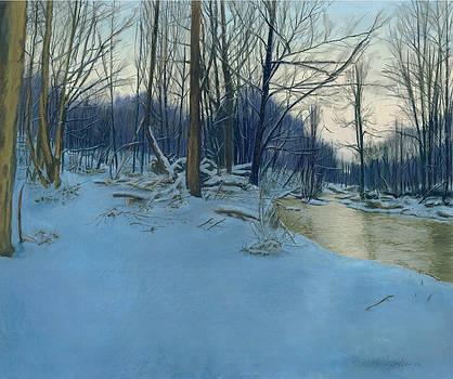 Dusk in the Woods by Bernadette Kazmarski
