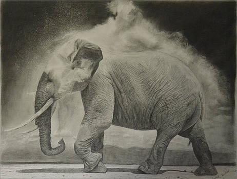 Dusty elephant by Casper Venter