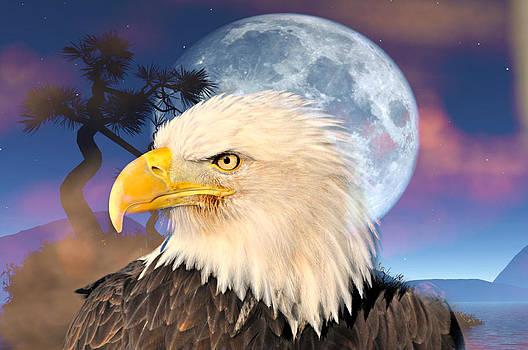 Marty Koch - Eagle Moon