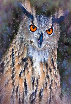 Eagle Owl by Jill Balsam